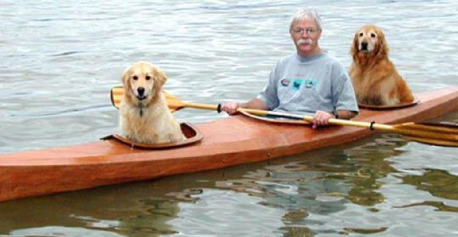 This Man Builds A Special Kayak To Take His Dogs On Little Adventures