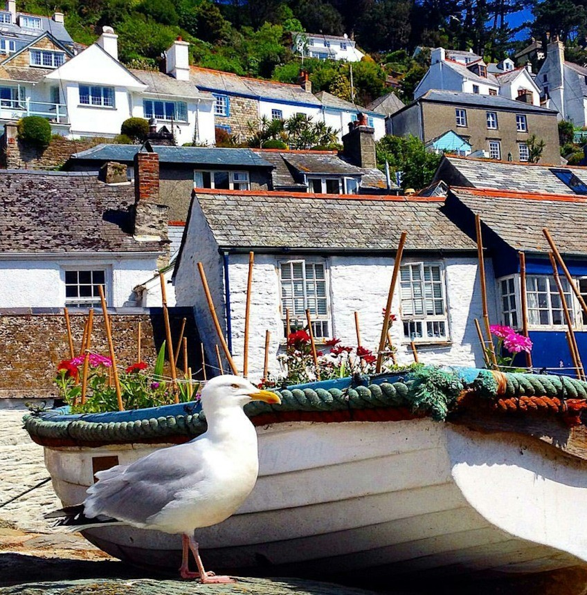 Things You Should Know About Cornwall Cottages