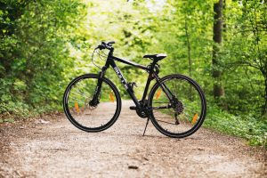 Camel Trail Bicycle