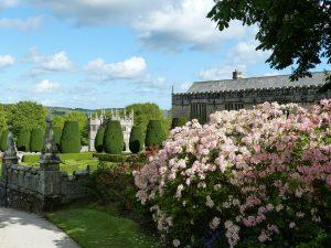 North Cornwall Gardens | Holidays in Cornwall