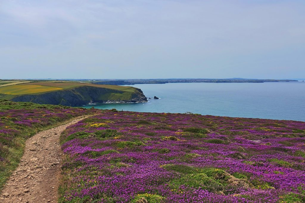 Cycle Routes in Cornwall